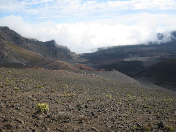 Maui - Oct & Nov 2014 348